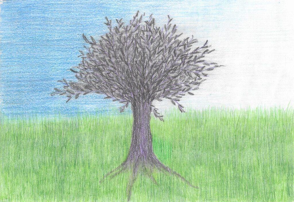 drzewo-ród-korzenie